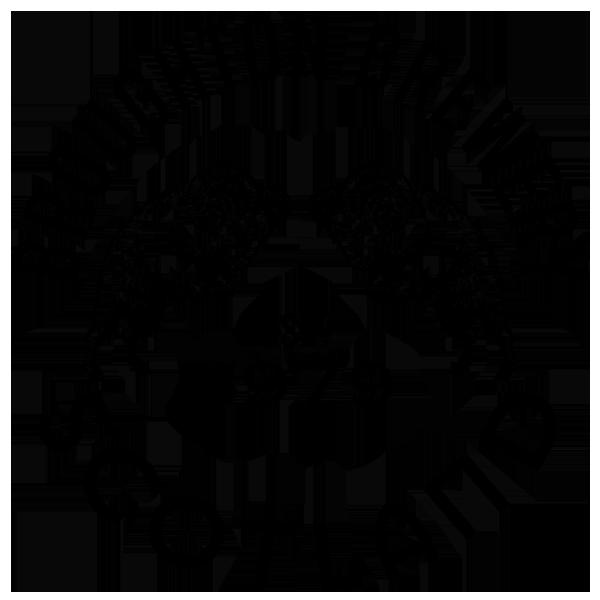 Broughton Brewery Logo